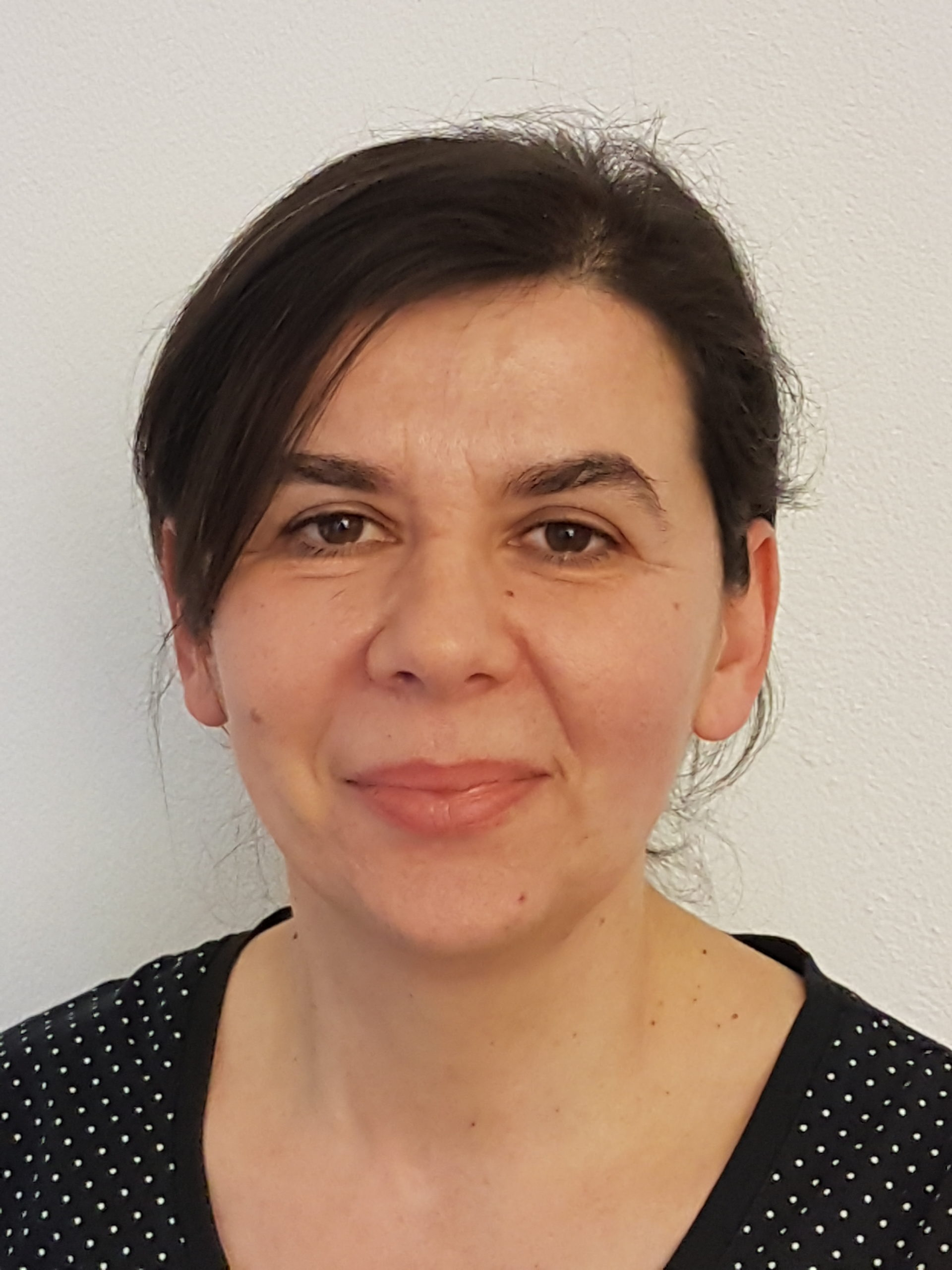 Ankica Gagulic